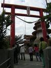 Okinawa0612_071
