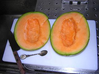 melon_001s.JPG