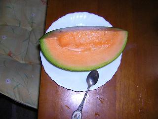melon_002s.JPG